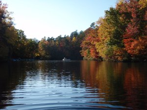 It's Time to Fall for Greenville, South Carolina