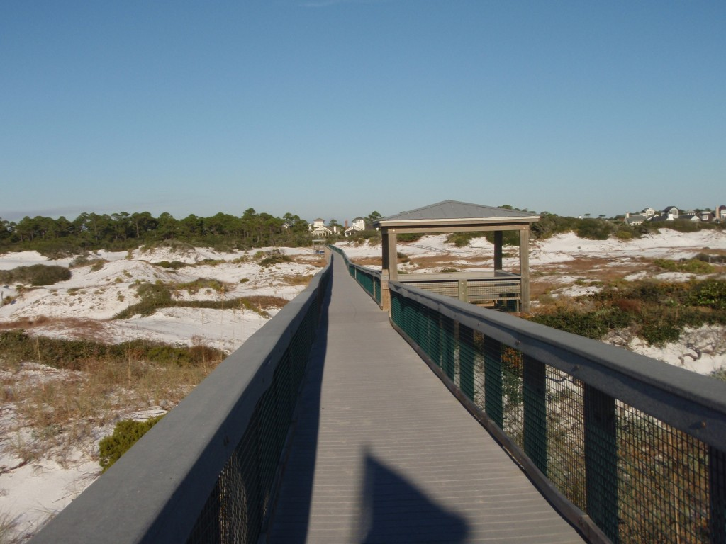 Deer Lake State Park Near Rosemary Beach, Florida