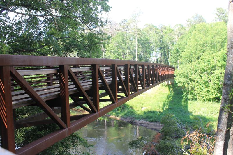 Take a Hike! Five great places in the Upstate to go hiking