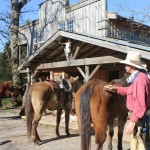 Giddy Up to the Seventy-Four Ranch in Northwest Georgia