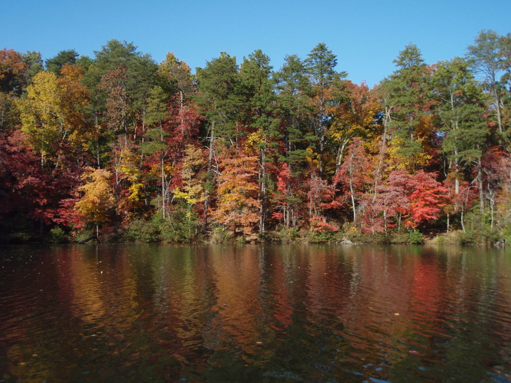 Fall Foliage excursions in the South Carolina Upstate
