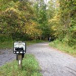 Ride the Virginia Creeper Trail