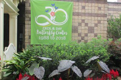 Georgia's Callaway Gardens Celebrates Butterflies