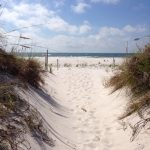 Alabama's Bon Secour Wildlife Refuge Provides Haven