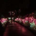 Bellingrath Gardens Makes Christmas Magic